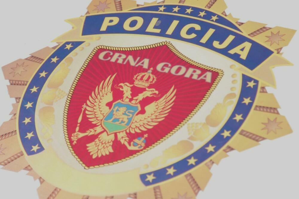 NOVA AKCIJA POLICIJE Zaplijenjena poluautomatska puška, pet pištolja i municija (FOTO)