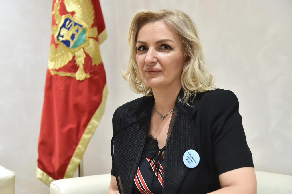 DOGOVOREN PILOT PROJEKAT Crna Gora sa Njemačkom ostvarila saradnju u telemedicini!
