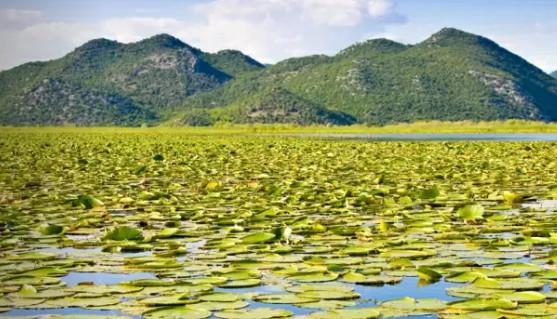 PRODUŽENA SEZONA Turisti i dalje dolaze na Skadarsko jezero i u Virpazar